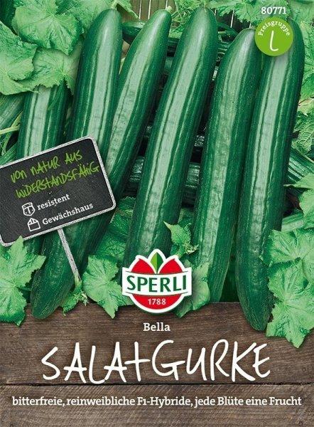 Salatgurke Bella