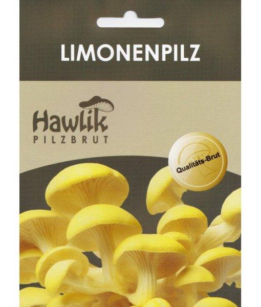 Limonenpilz für Stroh/Holz