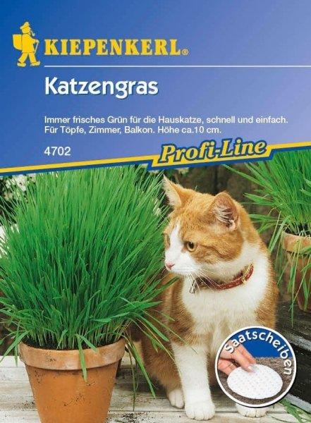 Katzengras 5 Saatscheiben