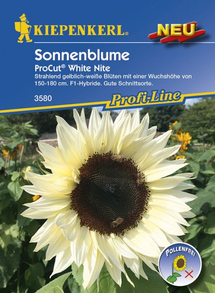 Sonnenblume ProCut® White Nite ca. 150cm